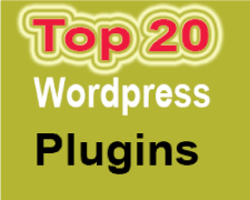 top 20 wordpress plugins