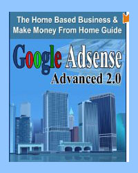 8 Google Ad Sense ebooks from Amazon