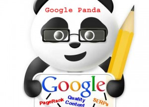 Google Panda Algo: What We Learned