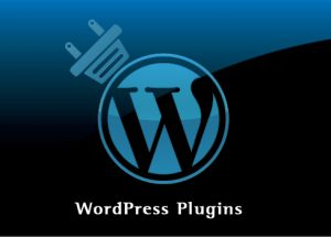 Top Illustrative Benefits Of Custom WordPress Plugin Benefits