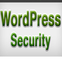 WordPress Attack-How To Secure Your WordPress Blog